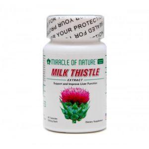 thao-duoc-teresa-milk thistle