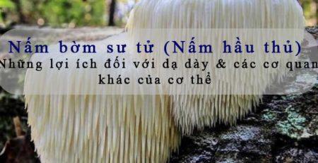 cong-dung-nam-bom-su-tu-nam-hau-thu-doi-voi-da-day-suc-khoe