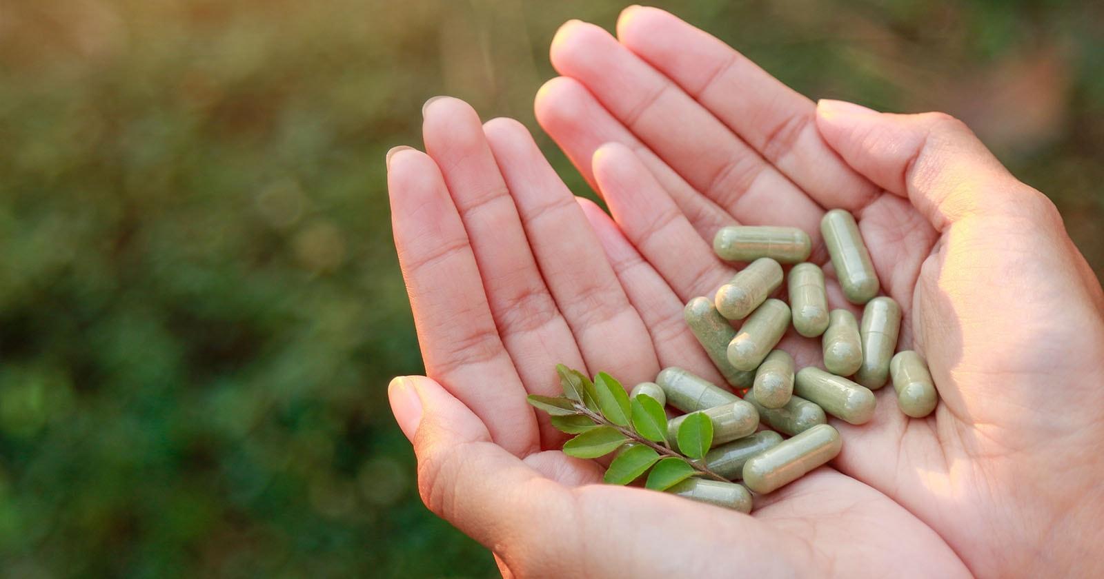 thao-duoc-teresa-herbs