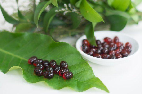thao-duoc-teresa-herbs-dau-nhuyen-the